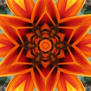 orange flower mandala1